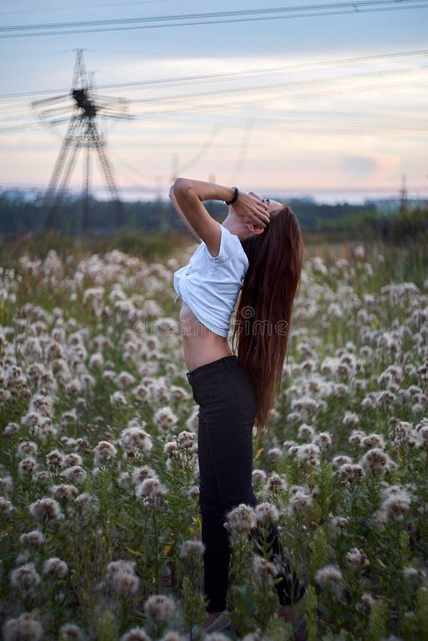 Bella ragazza sul giacimento di fiori della margherita Mani in su Il tempo tardo immagine stock
