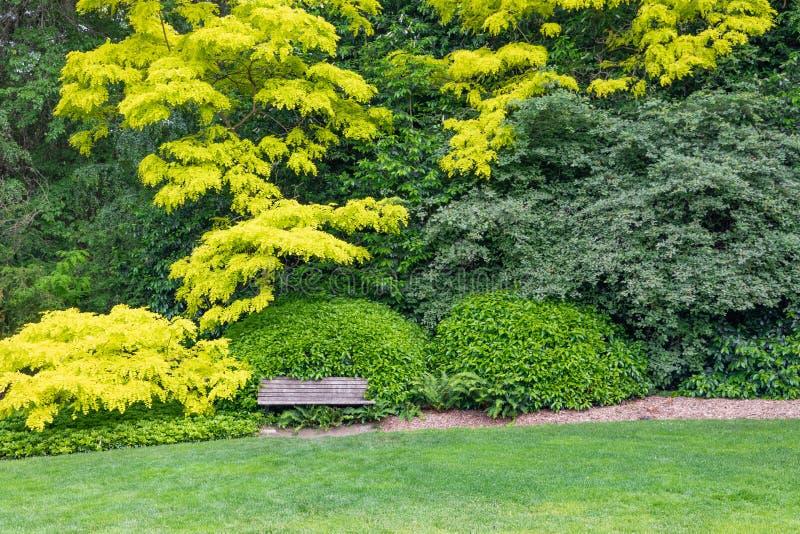 Bella regolazione verde del giardino con il banco di legno fotografia stock libera da diritti