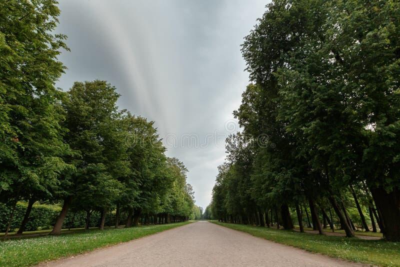 Bella scena del parco in parco pubblico con il campo di erba verde, la pianta verde dell'albero e un cielo blu nuvoloso del parti fotografia stock