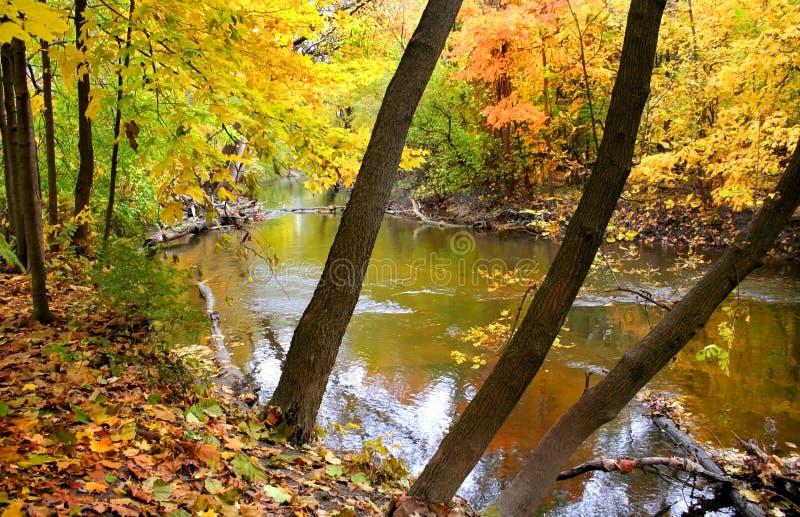 Bella scena di autunno immagine stock