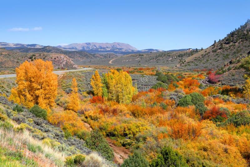 Bella scena di autunno fotografia stock libera da diritti