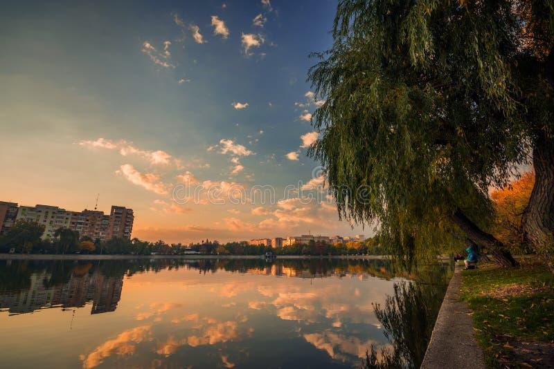 Bella scena di mattina un giorno nuvoloso in un parco con un certo fishe fotografia stock