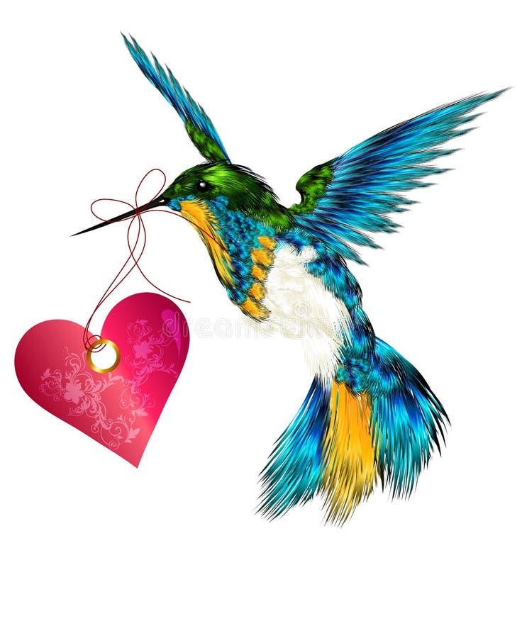 Bella scheda del biglietto di S. Valentino di vettore con il colibrì che tiene h rosa illustrazione di stock