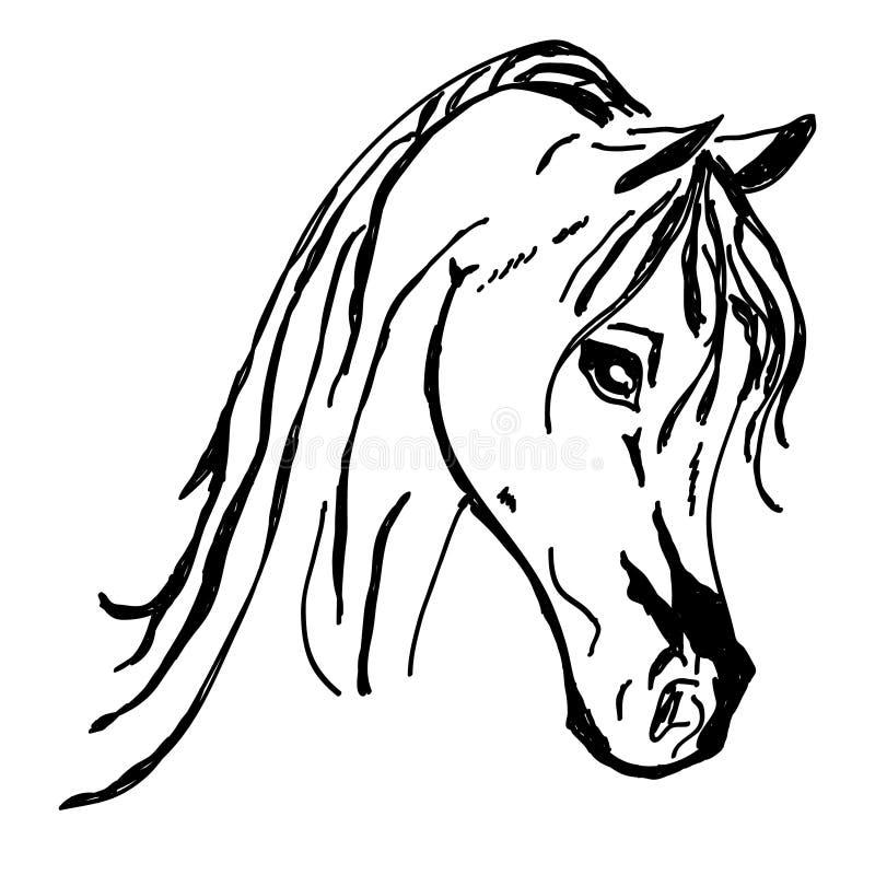 Bella siluetta della testa di cavallo isolata su fondo bianco royalty illustrazione gratis
