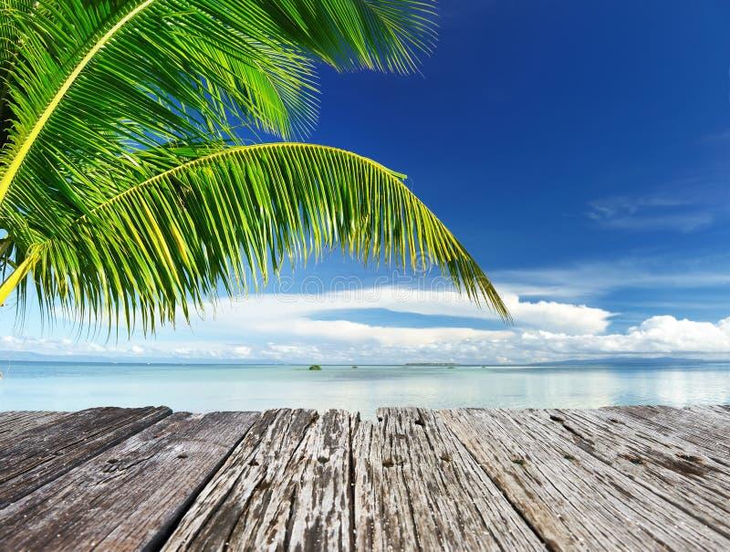 Download Bella spiaggia immagine stock. Immagine di nave, idilliaco - 55351609