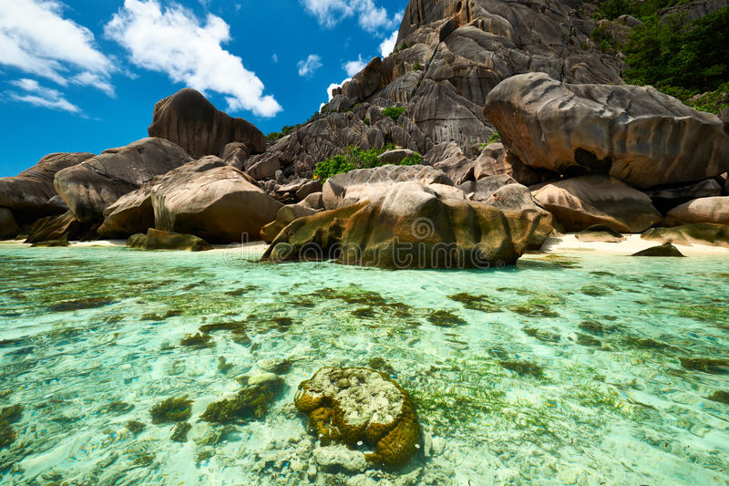 Bella spiaggia alle Seychelles immagine stock