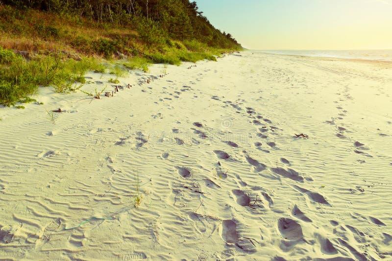 Bella spiaggia baltica vuota con le orme in sabbia Vista sul mare pittoresca scenica di estate Costa del Mar Baltico, Polonia fotografia stock