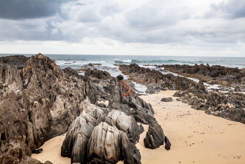 Bella spiaggia in capo Conran, Australia immagini stock