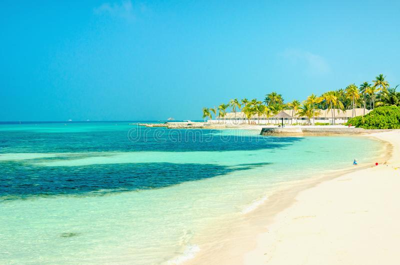 Bella spiaggia di paradiso con le palme ed il cielo blu alti fotografia stock