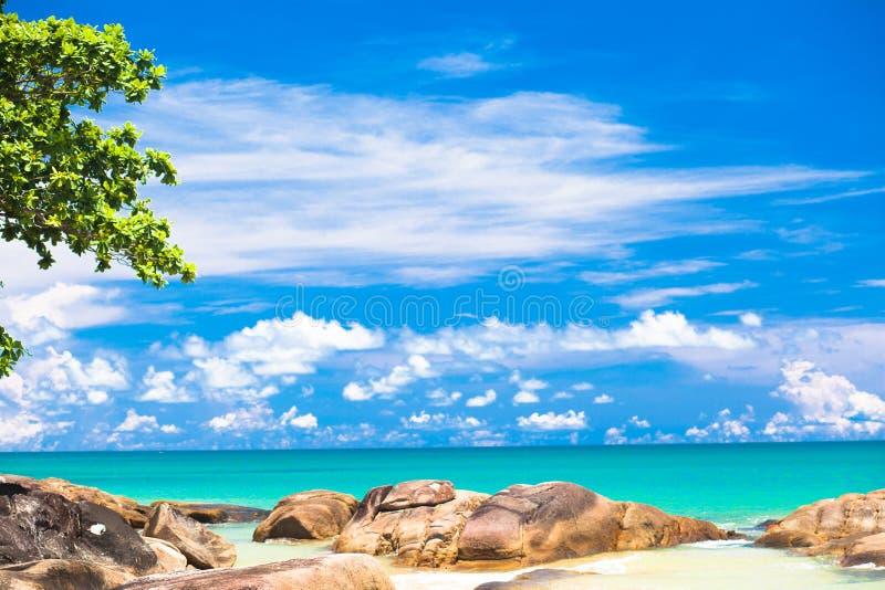 Bella spiaggia sabbiosa tropicale di Khaolak - Tailandia fotografia stock libera da diritti
