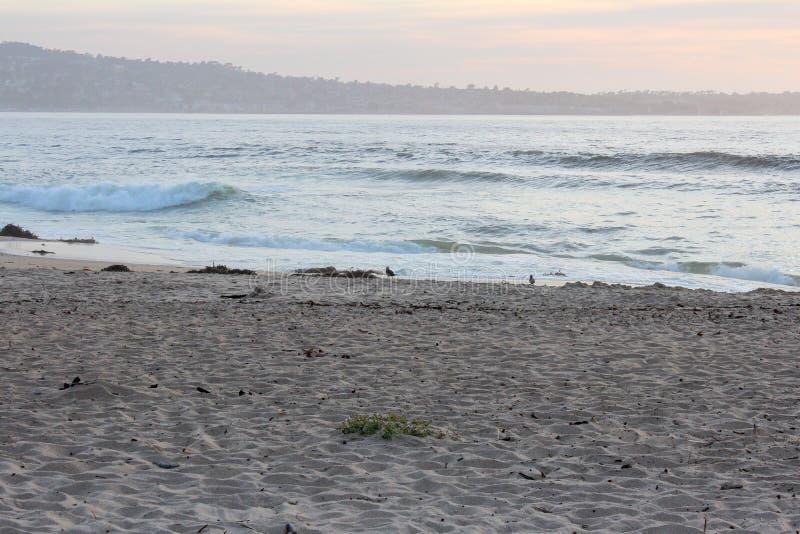 Bella spiaggia a Sand City nella contea di Monterey, California, Stati Uniti fotografia stock libera da diritti