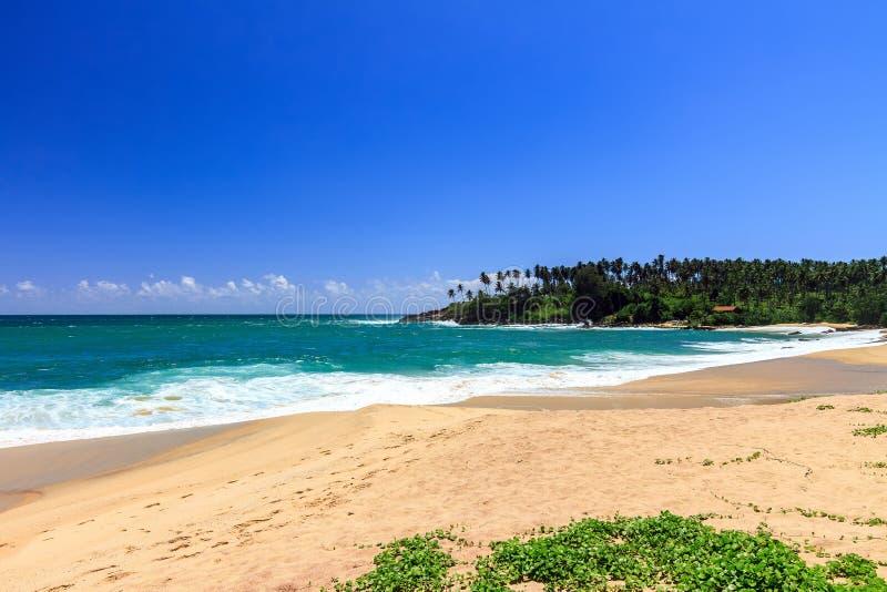 Bella spiaggia, Tangalle, Sri Lanka fotografia stock libera da diritti