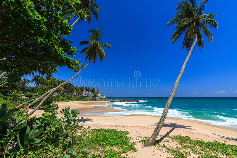 Bella spiaggia, Tangalle, Sri Lanka immagine stock