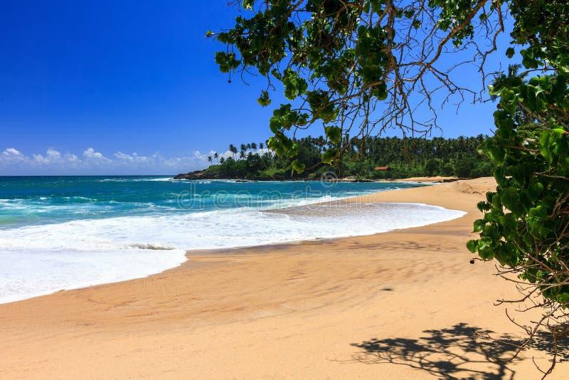 Bella spiaggia, Tangalle, Sri Lanka fotografia stock