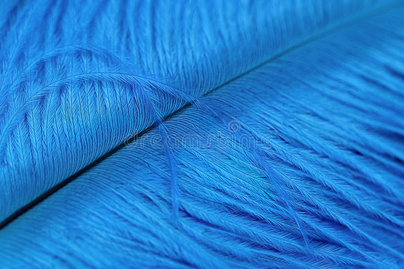 Bella spoletta blu immagine stock