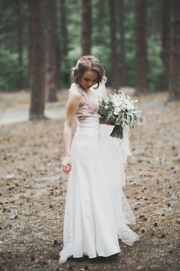 Bella sposa che posa in vestito da sposa all'aperto fotografia stock libera da diritti