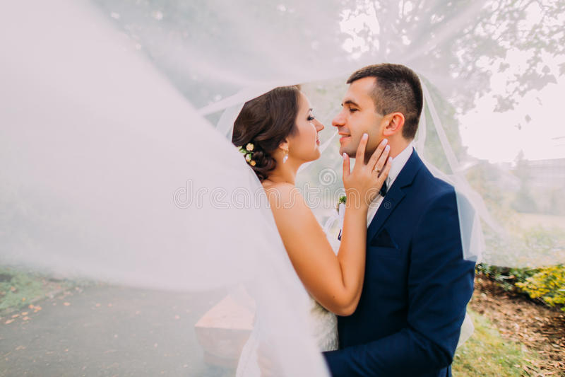 Bella sposa e sposo alla moda che vanno baciare Velo nuziale lungo che vawing in vento immagini stock