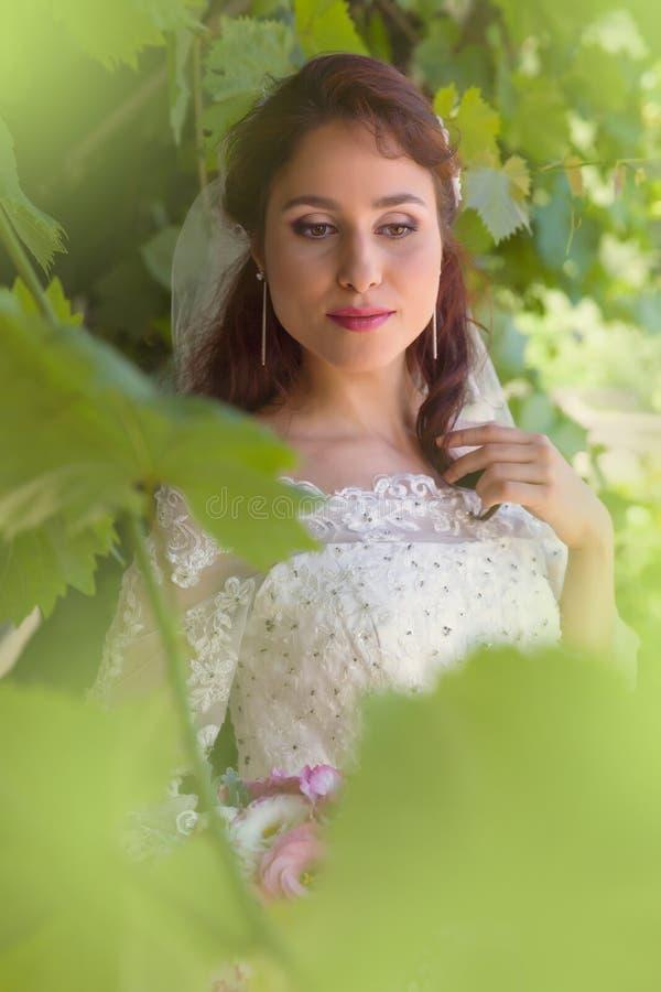 Bella sposa in fogliame verde fotografie stock