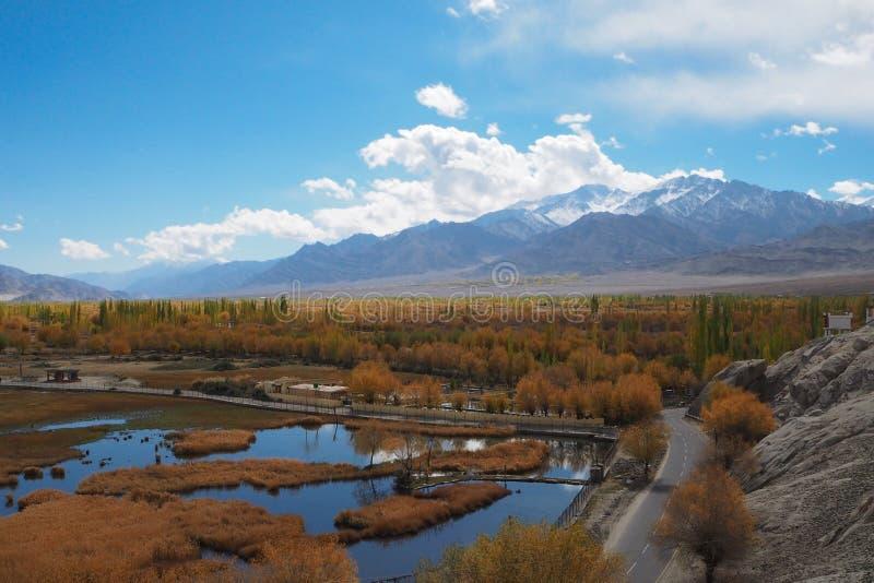 Bella stagione invernale in Leh Ladakh, l'India fotografia stock