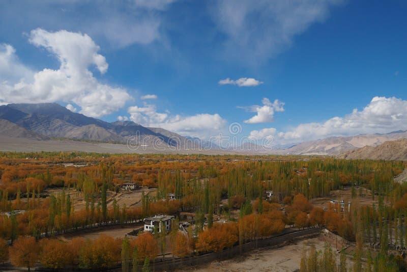 Bella stagione invernale in Leh Ladakh, l'India fotografie stock libere da diritti