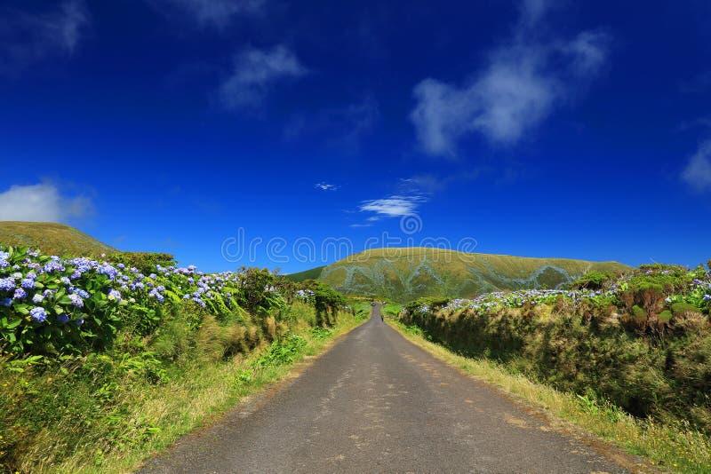 Bella strada alpina sull'isola del Flores in un giorno soleggiato immagine stock libera da diritti