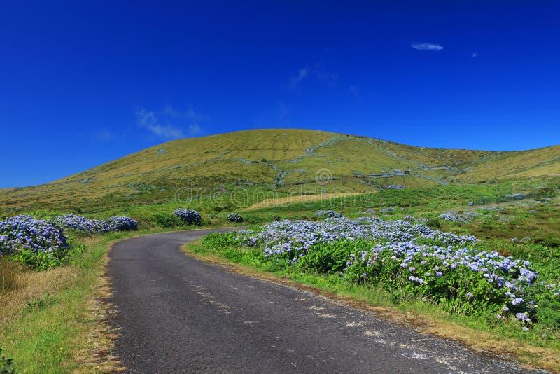 Bella strada alpina sull'isola del Flores in un giorno soleggiato fotografie stock