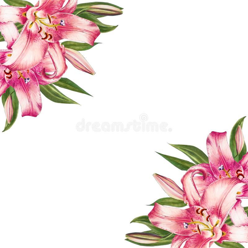 Bella struttura dell'angolo del giglio di rosa Mazzo dei fiori Stampa floreale Disegno dell'indicatore illustrazione vettoriale