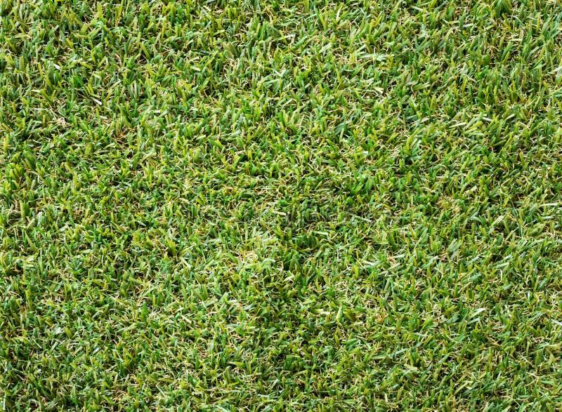 Bella struttura dell'erba verde dal campo da golf immagine stock