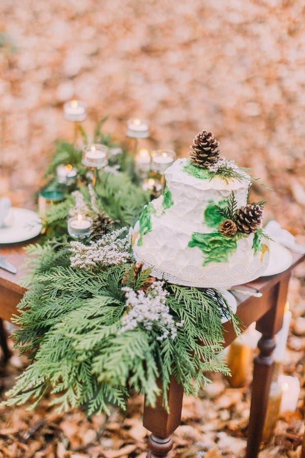 Bella torta nunziale decorata con i pinecones ed i rami attillati immagini stock libere da diritti