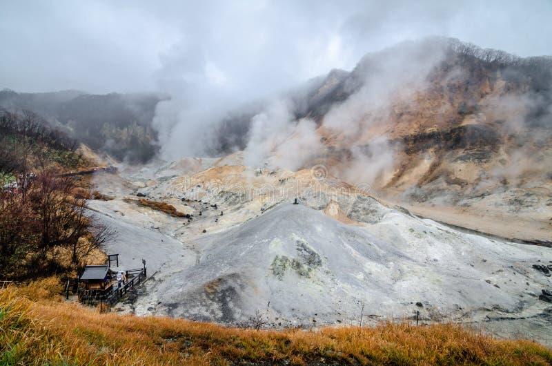 Bella valle di Jigokudani o del ` della valle dell'inferno del ` immagini stock libere da diritti