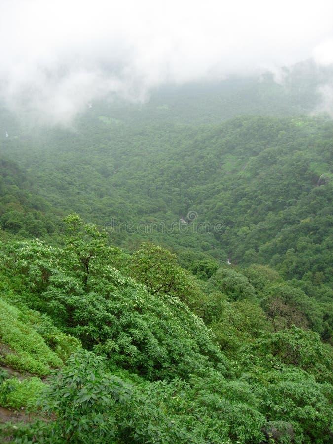 Bella valle verde fotografie stock