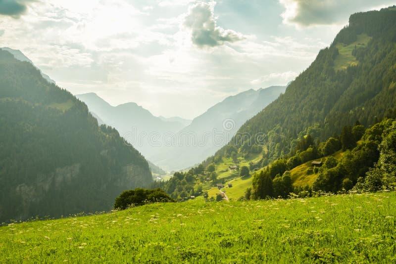 Bella valle vicino alla città di Grindelwald immagine stock libera da diritti