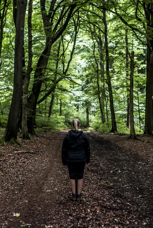 Bella viandante della donna che sta sul distogliere lo sguardo della traccia della foresta Femmina sull'aumento nelle foreste mis fotografia stock libera da diritti