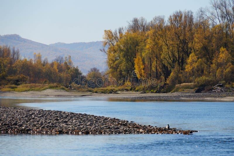 Bella vista in autunno, tratto di Chuysky, Repubblica di Altai, Russia fotografie stock libere da diritti