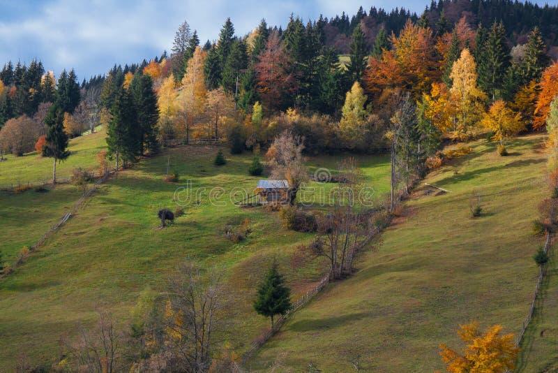 Bella vista da Moeciu Romania immagine stock