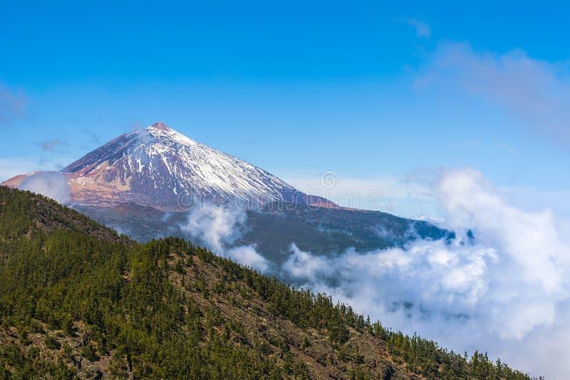 Bella vista del vulcano famoso unico Teide un giorno soleggiato, parco nazionale di Teide, Tenerife, isole Canarie, Spagna fotografia stock libera da diritti