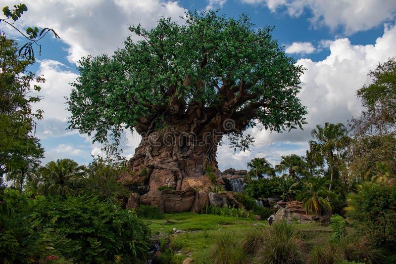 Bella vista dell'albero della vita al regno animale ad area 2 di Walt Disney World immagini stock