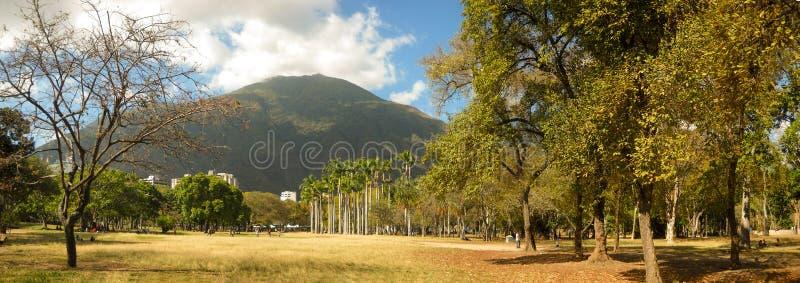 Bella vista della montagna di Avila dal parco orientale Caracas Venezuela immagini stock