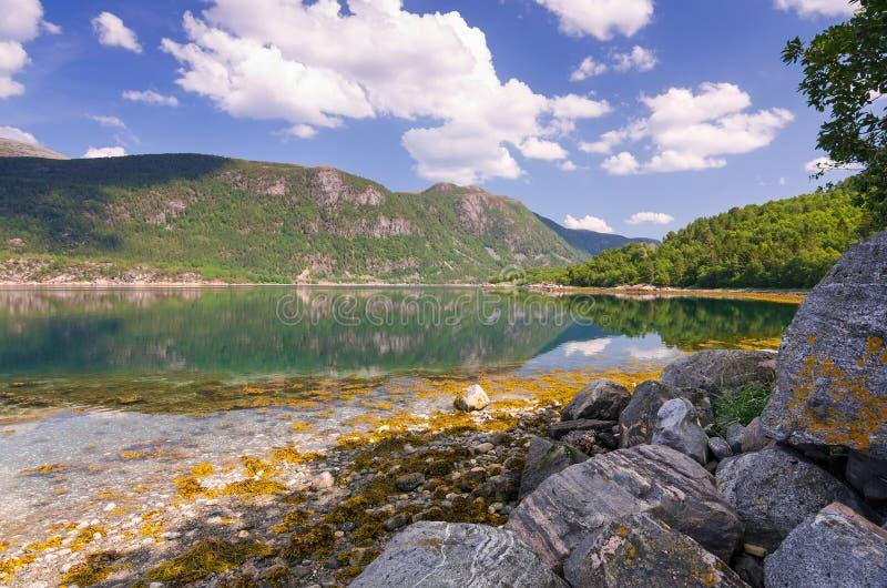 Bella vista di estate del fiordo norvegese immagini stock libere da diritti
