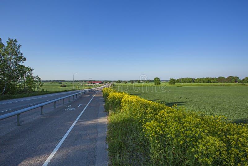 Bella vista di paesaggio con i campi verdi, la strada della strada principale, gli alberi forestali verdi ed il cielo blu fotografia stock