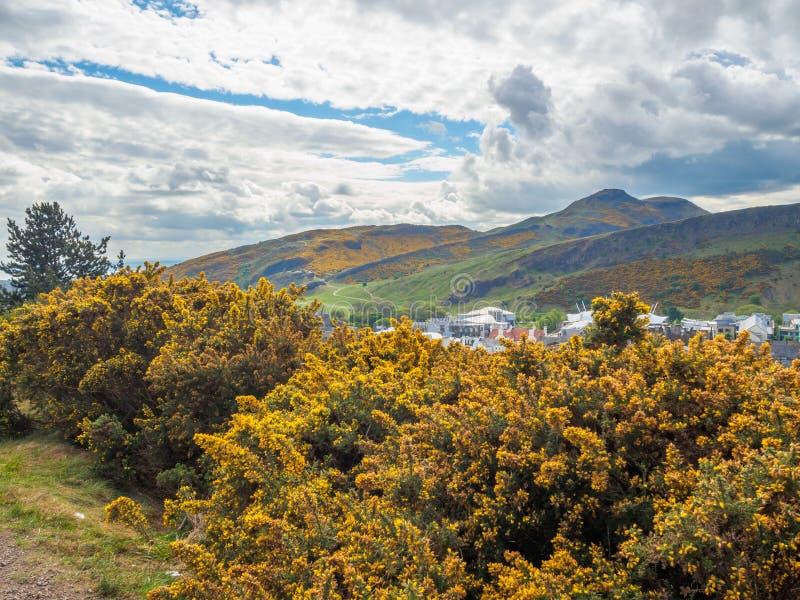 Bella vista di Seat di Arthur a Edimburgo, Scozia, Regno Unito dalla collina di Calton immagine stock