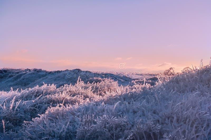 Bella vista favolosa di inverno gelido immagine stock libera da diritti