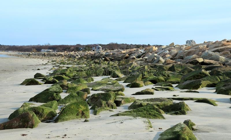 Bella vista iniziale della molla della spiaggia di Duxbury immagini stock