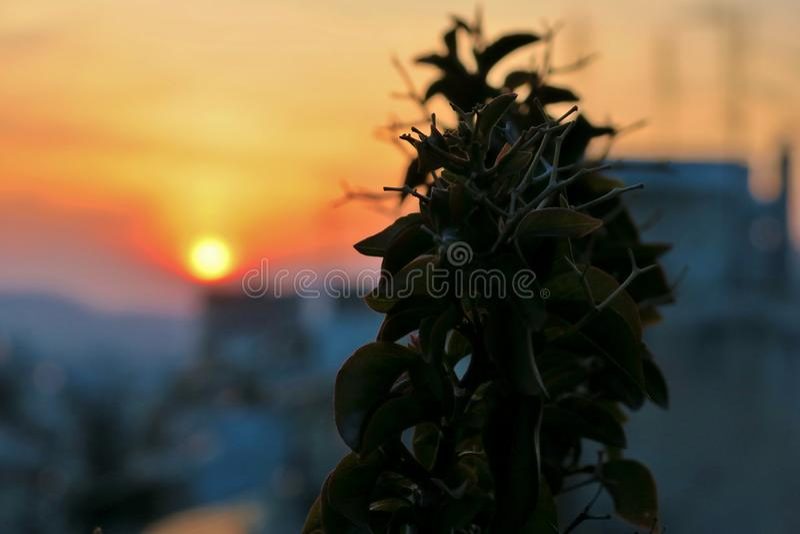 Bella vista lontano sopra dal tramonto di colore immagine stock