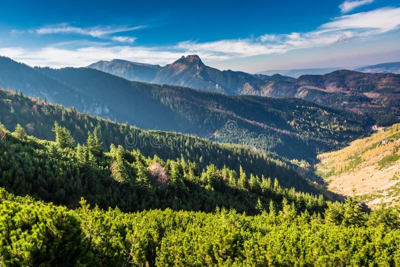 Bella vista in montagne di Tatra dalla cresta in autunno fotografia stock