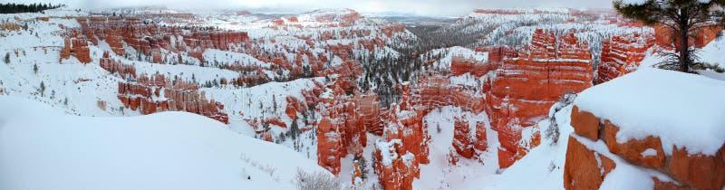 Bella vista panoramica del canyon Nationalpark di Bryce con neve nell'inverno con le rocce rosse/Utah/U.S.A. fotografia stock