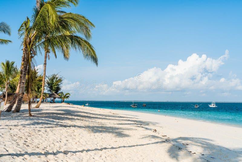 Bella vista sul mare con le palme su una spiaggia immagine stock
