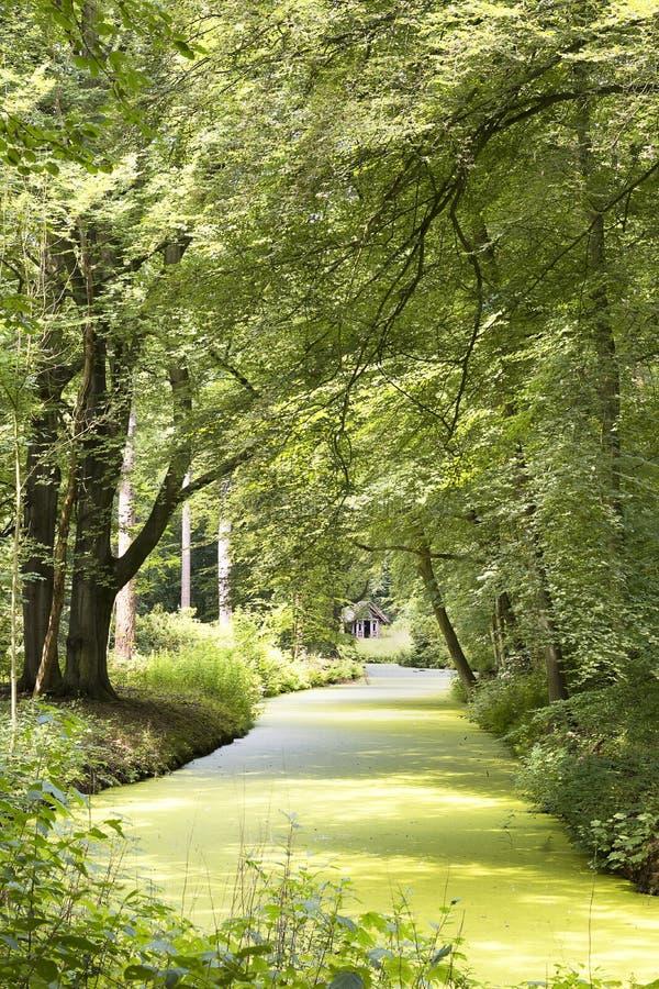 Bella vista sul sedile di paese Elswout, vicino a Overveen e a Bloemendaal nei Paesi Bassi Elswout è un estat storico e scenico immagini stock