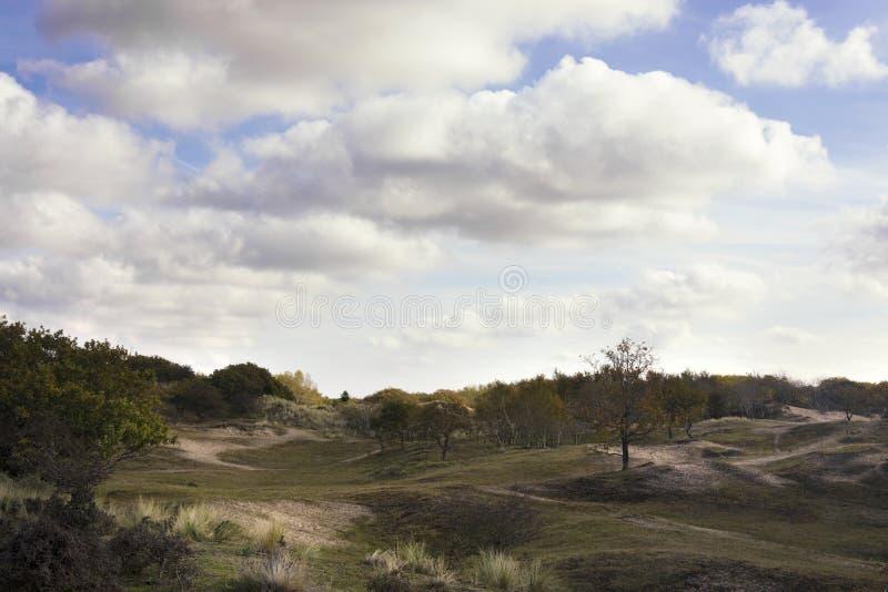 Bella vista sulla zona costiera del Waterleidingduinen, vicino ad Amsterdam, i Paesi Bassi immagini stock libere da diritti