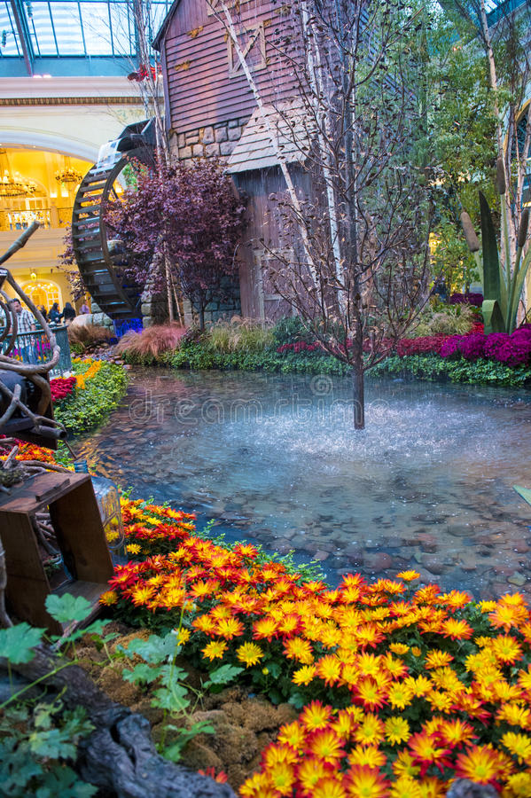 Download Bellagio Hotel Conservatory & Botanical Gardens Editorial Photography - Image: 30417212